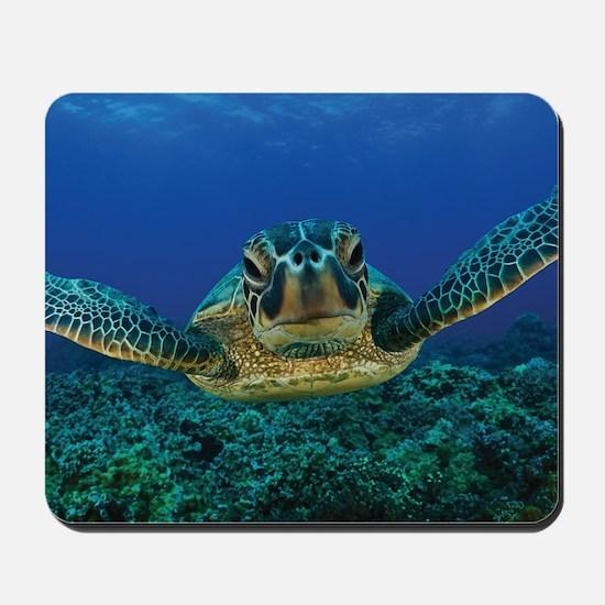 Turtle Swimming Mousepad