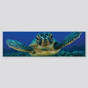 Turtle Swimming Bumper Sticker