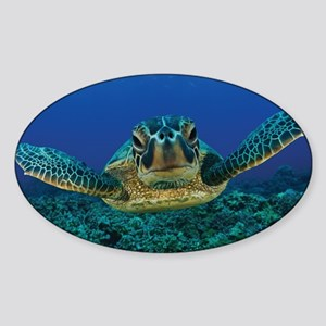 Turtle Swimming Sticker