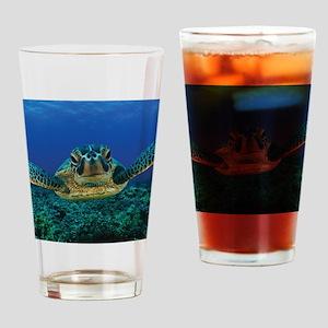 Turtle Swimming Drinking Glass