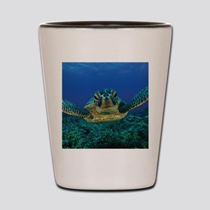 Turtle Swimming Shot Glass