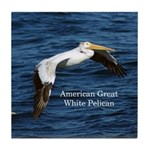 American Great White Pelican Tile Coaster
