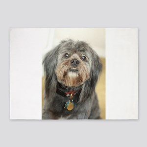 Kona dark small dog fluffy 5'x7'Area Rug