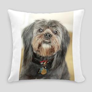 Kona dark small dog fluffy Everyday Pillow