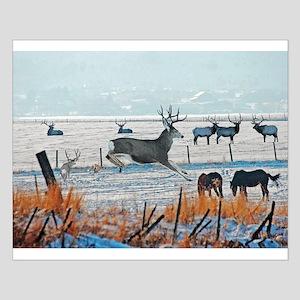 Winter Wildlife Posters