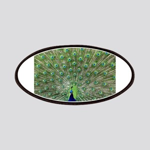 Peacock20170102 Patch