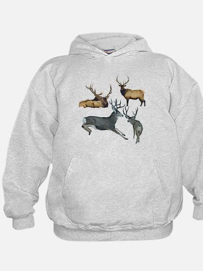 Bull elk and buck deer 17 Hoodie