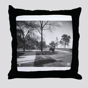 Lake Shore Drive/Burton Throw Pillow