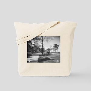 Lake Shore Drive/Burton Tote Bag