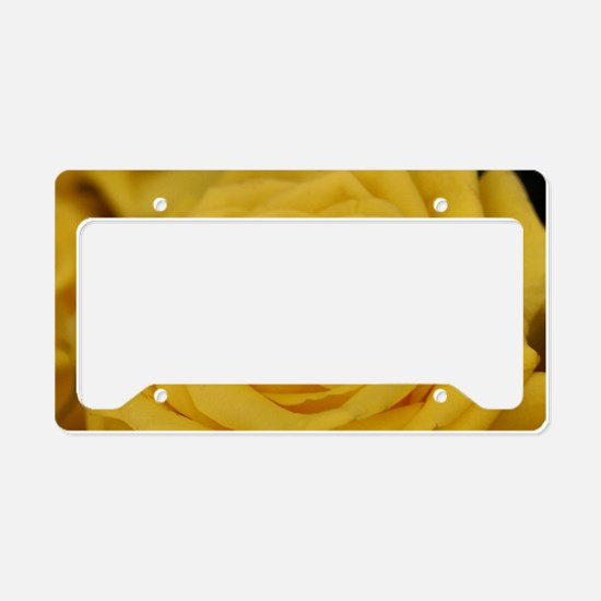 Yellow roses License Plate Holder