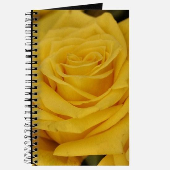Yellow roses Journal