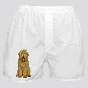 Goldendoodle Photo Boxer Shorts