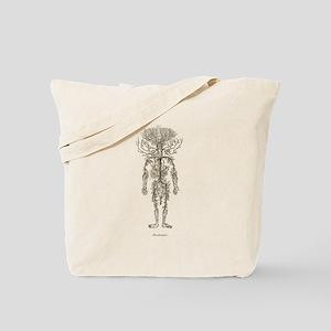 Circulatory System, Arteries Tote Bag