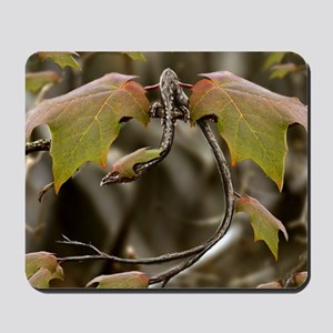Fantasy Dragon Mousepad