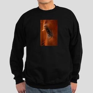Eye of the Horse Sweatshirt