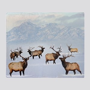 Northern bull elk Throw Blanket