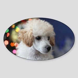 Christmas toy poodle puppy Sticker