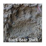 Real Bear Track Tile Coaster