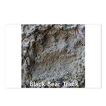 Real Bear Track Postcards (Package of 8)