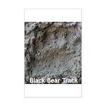 Real Bear Track Mini Poster Print