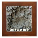 Real Bear Track Framed Tile