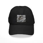 Real Bear Track Black Cap