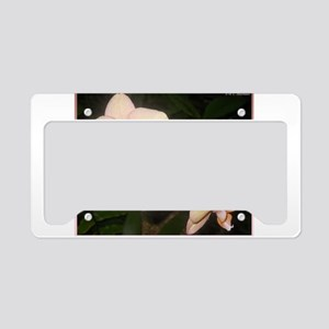 Pink Orchid, tropical flower photo License Plate H