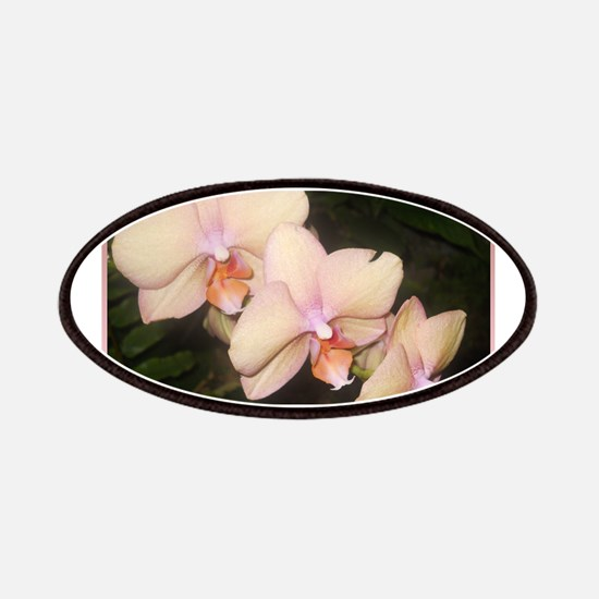 Pink Orchid, tropical flower photo Patch