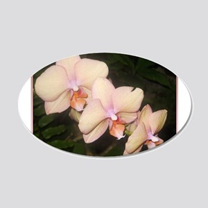 Pink Orchid, tropical flower photo Wall Decal