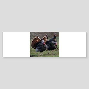 Four Gobblers Bumper Sticker