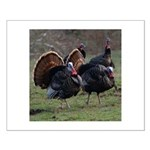 Four Gobblers Small Poster