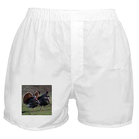 Four Gobblers Boxer Shorts