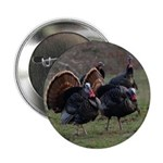 Four Gobblers 2.25