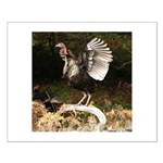 Turkey Flapping Wings Small Poster
