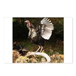 Turkey Flapping Wings Postcards (Package of 8)