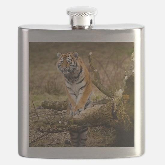 Unique Tiger Flask
