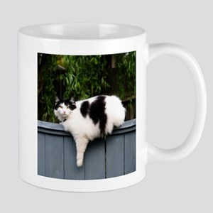 Big Fat Cat On Fence Mugs