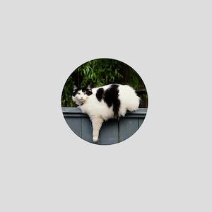 Big Fat Cat On Fence Mini Button