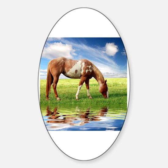 Unique Horse eye Sticker (Oval)