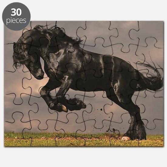 Unique Horse Puzzle