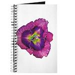 Lavender Eye Daylily Journal