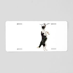 Border Collie Clingy Dog Aluminum License Plate
