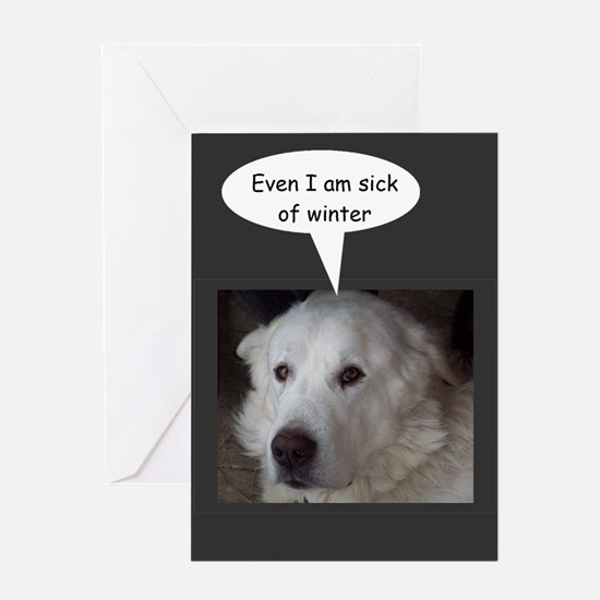 Great Pyrenees is sick of winter Greeting Cards