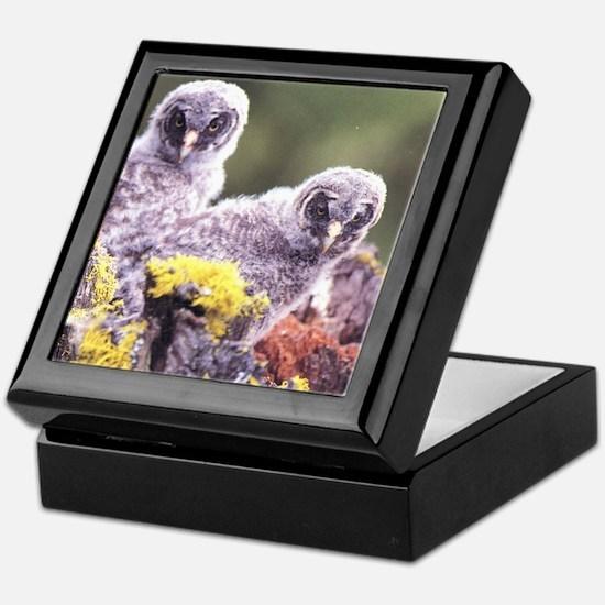 Cute Owl personalized Keepsake Box