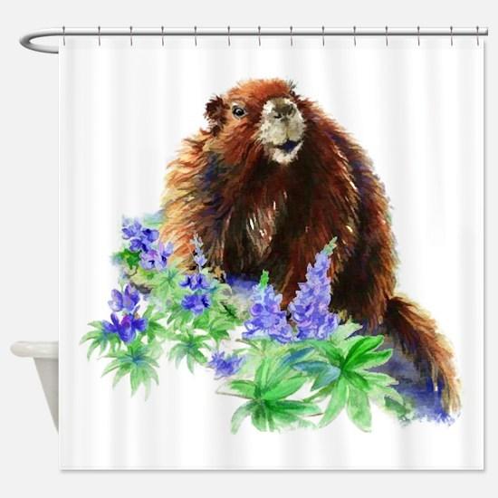 Marmot, Groundhog, Watercolor Wildlife Animal art