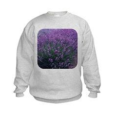 Lavandula - Lavender Sweatshirt