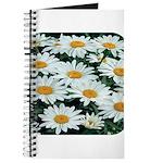 Shasta Daisies Journal