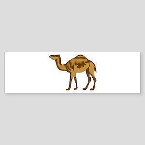 CAMEL Bumper Sticker