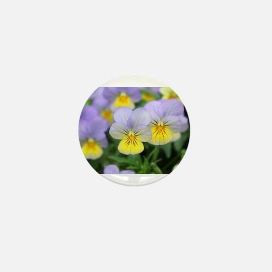 yellow purple pansy flower Mini Button