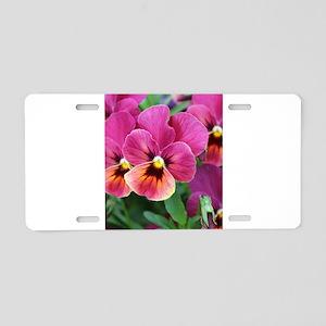 European Garden Pink Pansy Flower Aluminum License